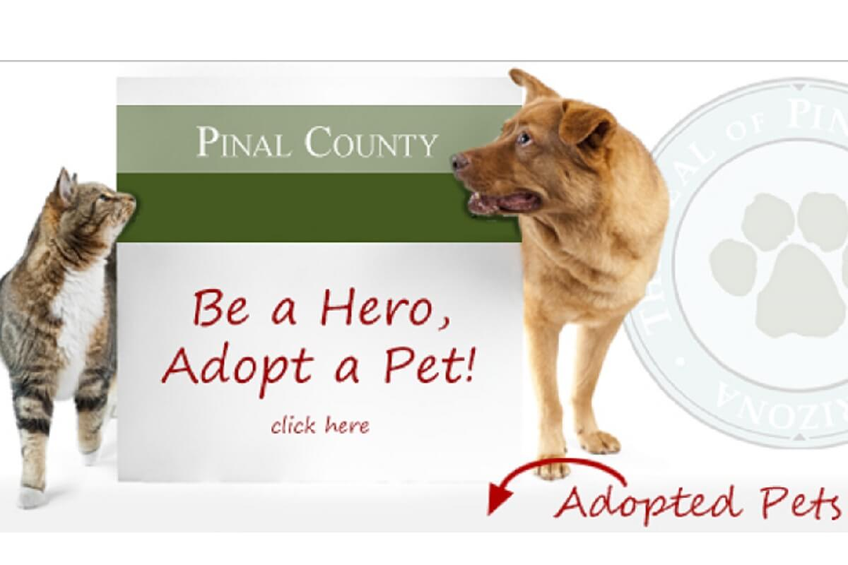Pinal County Animal Care and Control to have Limited Hours of Operation on September 4 and 5
