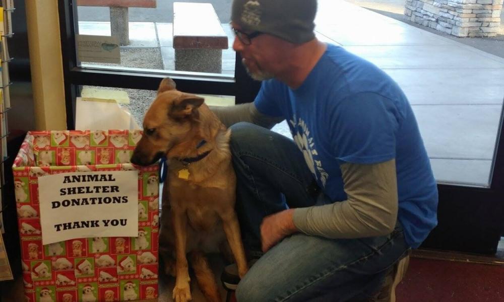 Donate Pillows Animal Shelter : Animal Shelter Blanket Drive SanTanValley.com